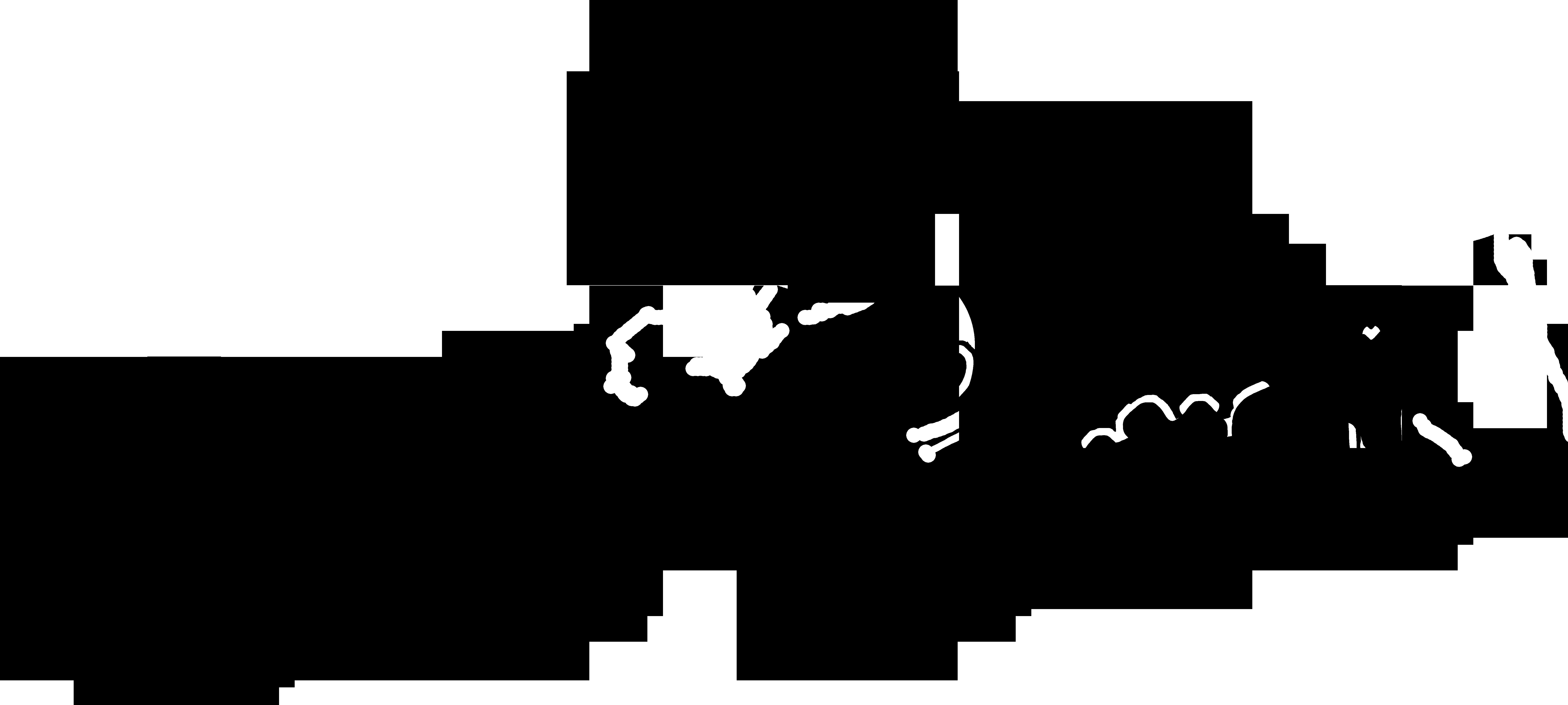 bcshirt-iv
