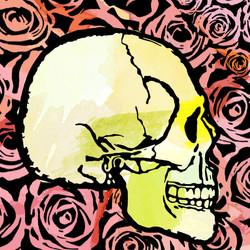 skull-vector