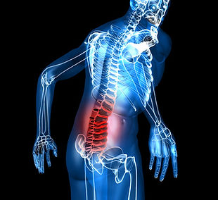 Back Pain. Spinal Cord pain