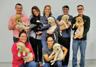 16_12 Pilot testing Group puppy photo 2.jpg