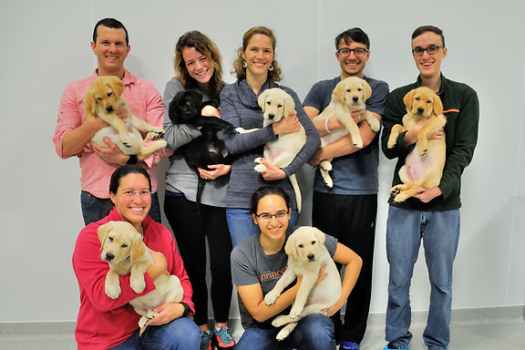 16_12 Pilot testing Group puppy photo 2.