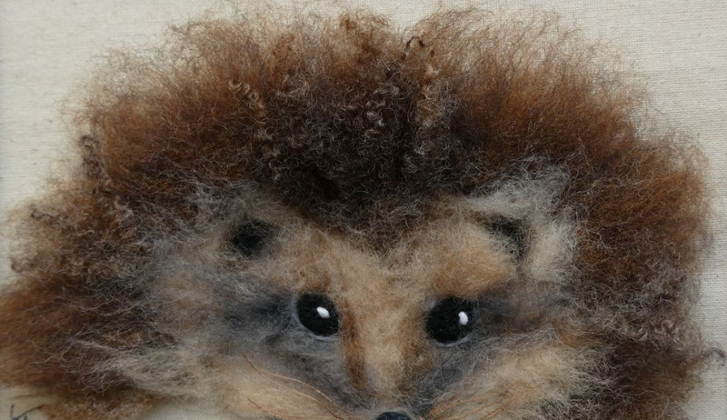 hedgehog 4 (2).JPG