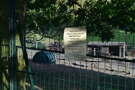 Wilson Animal Park