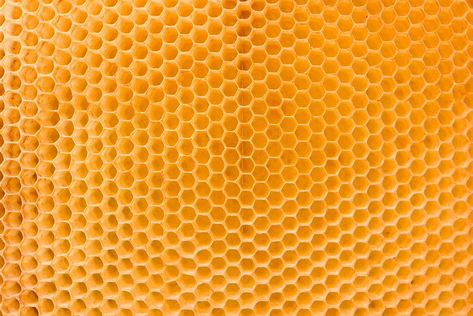 honeycomb-bg.jpg