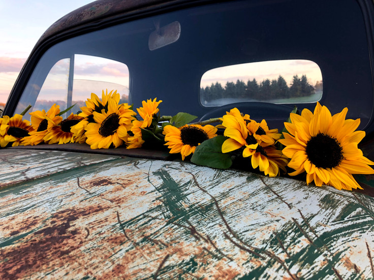 Farm Truck with Sunflowers