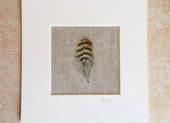 Fine Art Giclee Feather Study II Print