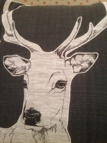 grey stag close up.jpg