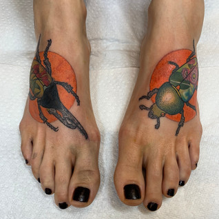 Insect Feet.jpg