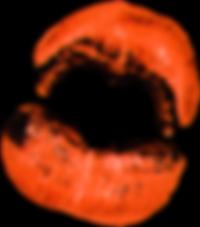 Orange-Lips.png