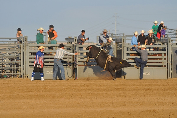 Rodeo_2.jpg
