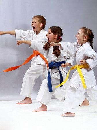 Karate Bahad Eight