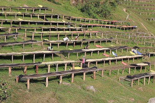 Rwanda - COOPAC - Nyabumera - Microlot A