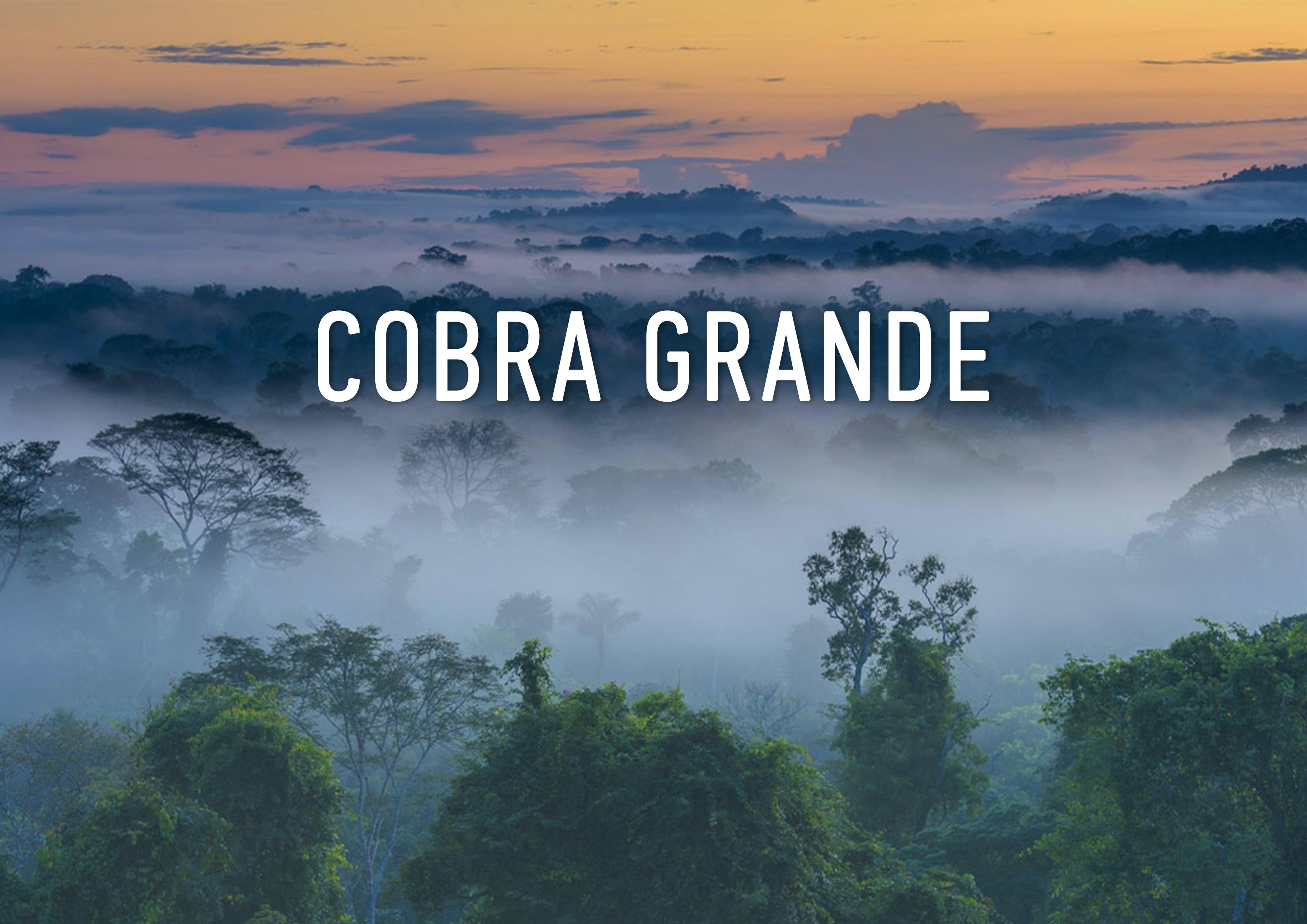 1. cobra_cover