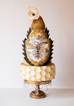 Show Cakes & Collaborations