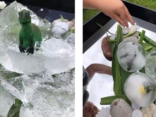 Big Freeze - Ice Play Activities