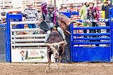 California Junior Cowboys Association