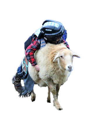 Mutton Buster.png