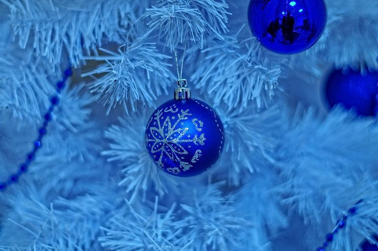 christmas-tree-3884971_1920.jpg