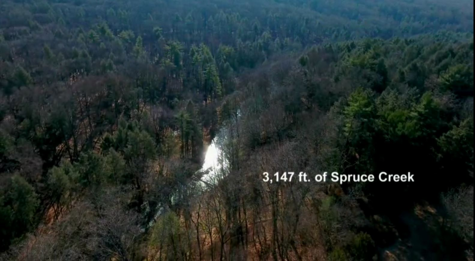 3,147 LF of Spruce Creek Frontage