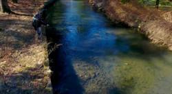 Fisherman on Spruce Creek