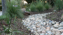 Swampy or Erosion Prone Areas