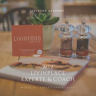 M12 - LIVINPLACE EXPERTE & COACH COVER .
