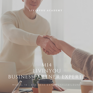 M14 - LIVINYOU BUSINESSPARTNER EXPERTE C