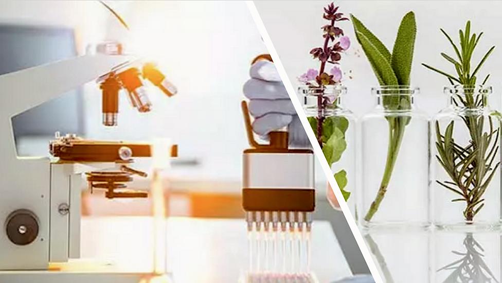 estrazione piante stem cells.png