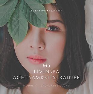 M5 - LIVINSPA ACHTSAMKEITSTRAINER COVER.