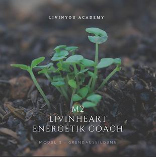 M2 - LIVINHEART ENERGETIK COACH COVER.pn