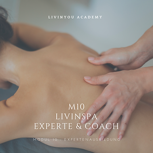 M10 - LIVINSPA EXPERTE & COACH COVER .pn
