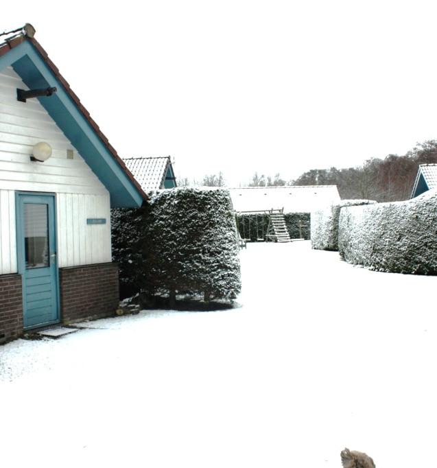 zeebungalows winter 14k.JPG