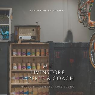 M11 - LIVINSTORE EXPERTE & COACH COVER .