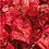 Thumbnail: Cuneesi al Rhum - 3kg