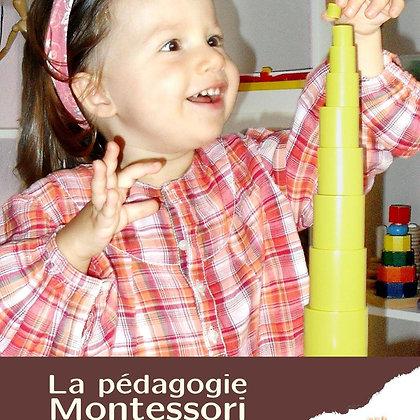 La pédagogie Montessori, Aspects théoriques et pratiques
