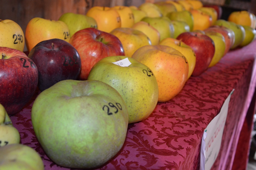 Le mele grosse