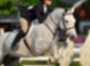 Hallelujah Large Pony Hunter