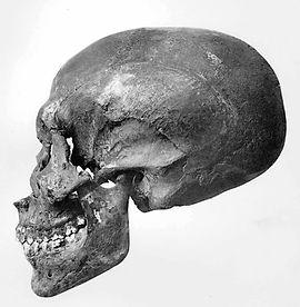 KV 55 skull side GE Smith 1912 (copyrigh