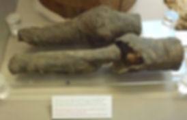 Nefertari, mummified legs in Turin, Museo Egizio