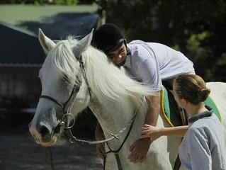 ¿Es el caballo un verdadero terapeuta?