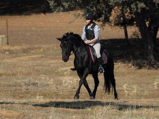Montar a caballo: beneficios para el cuerpo y la mente
