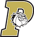 Palmer High School logo.png