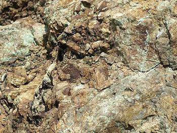Licenciamento Mineração, Consultoria em Mineração Londrina, Consultoria Ambiental, Consultoria em Mineração e Meio Ambiente, Geo Explorer Consultoria, Minerais, DNPM