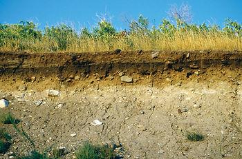 consultoria ambiental londrina meio ambiente estudo geologico geotecnico
