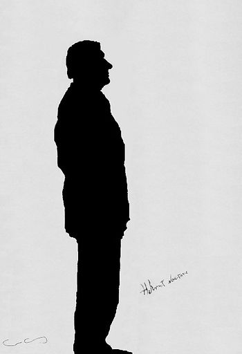 "Klaus Guingand Artwork ""Helmut Newton's shadow"" - 1995"