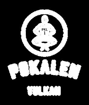 pokalen_vulkan_logo.png