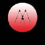 AAIstanbulVS_website_logo.png