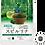 Thumbnail: Power Food Spirulina(Supliement alimentar - Spirulina )
