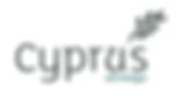 CYPRUS AIRWAYS.png