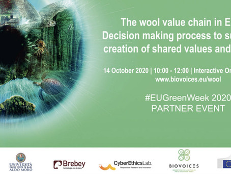 The wool value chain in Europe | Interactive Online Workshop